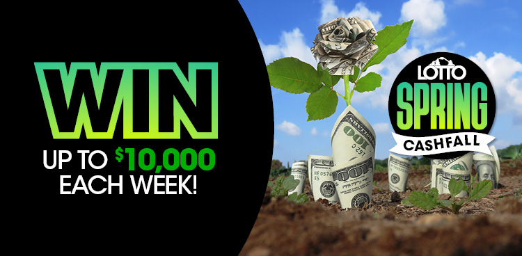 Lotto Spring Cashfall